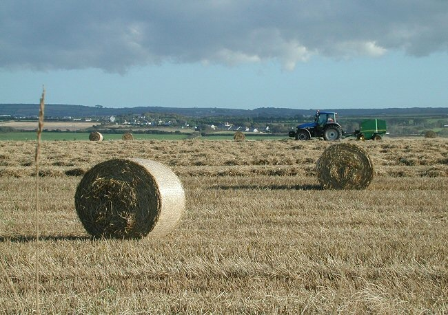 Farming In The parish