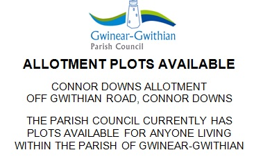 Allotment Plots Available
