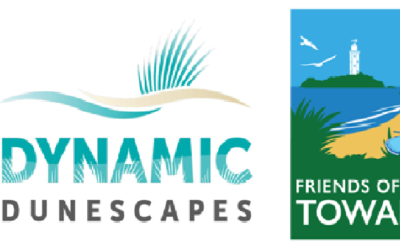 Find out more and get involved ……. Dynamic Dunescapes Project at The Towans